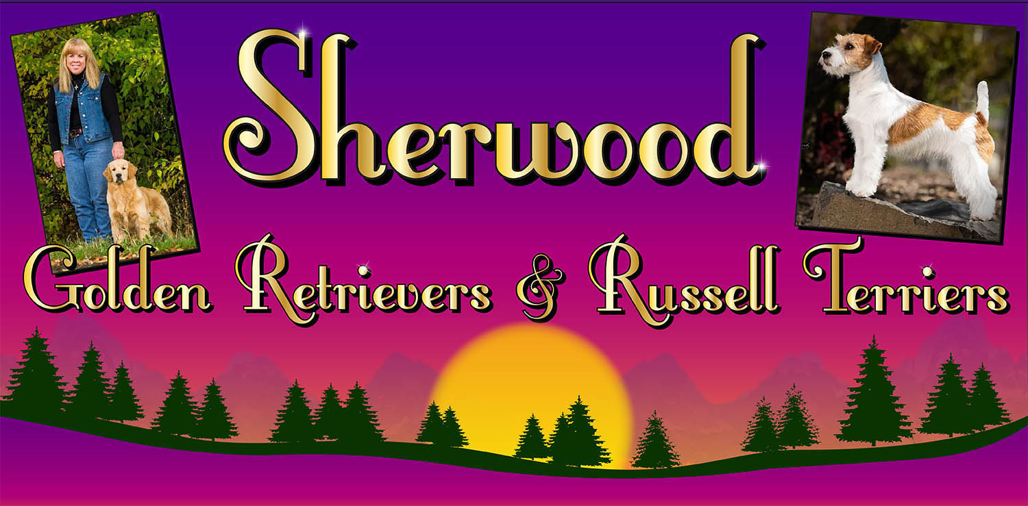sherwood golden retrievers and russell terriers